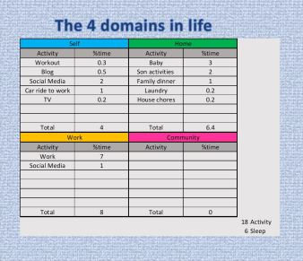 4 domains in life assessment
